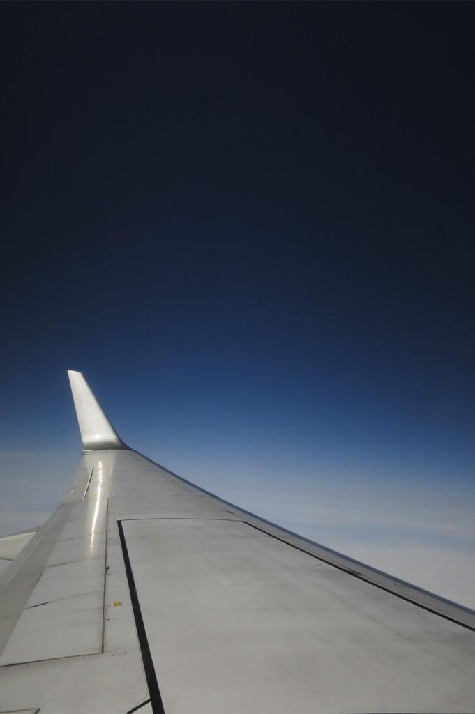 wing & sky