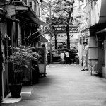 yaesu15_mono