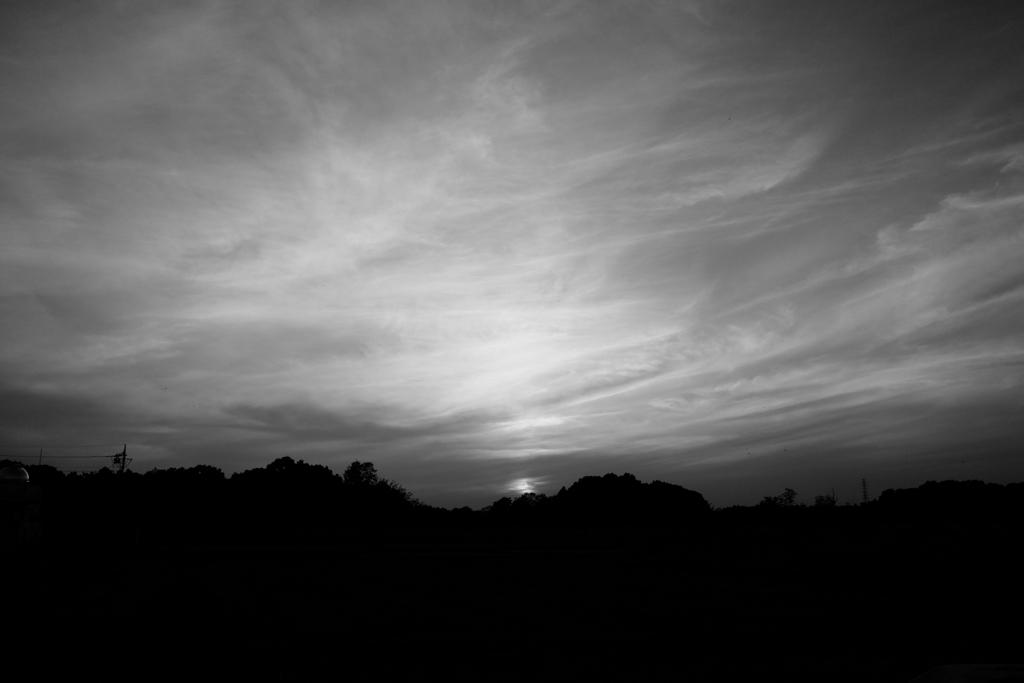 カスタム 5 (Black & White)