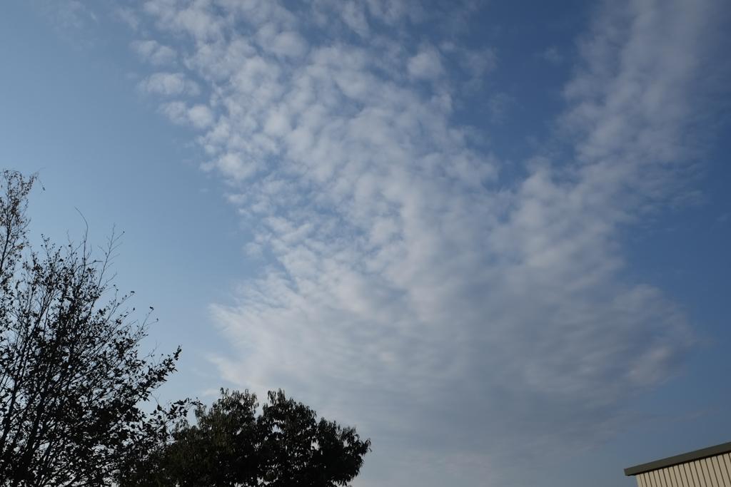 初撮り:空
