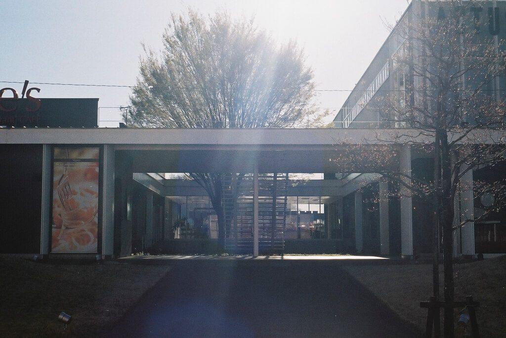 逆光 XD, MD ROKKOR 50mm f/1.7, FUJIFILM 業務用フィルム